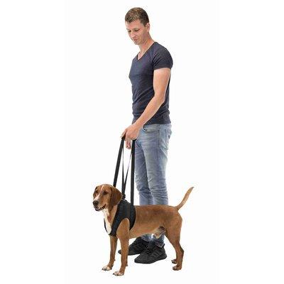 TRIXIE Gehhilfe Tragehilfe für Hunde Preview Image