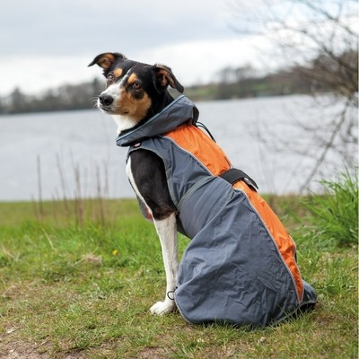 TRIXIE Hunde Regenmantel Solid Preview Image