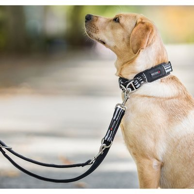 Wolters Hundehalsband Active Pro Preview Image