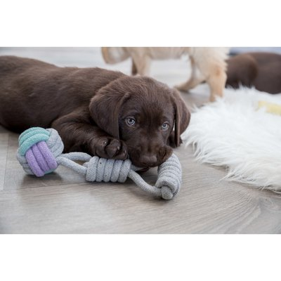 TRIXIE Hundespielzeug Spieltau mit Handschlaufe Preview Image