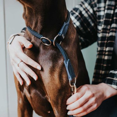 Hunter Hundehalsband Round & Soft Leder Preview Image