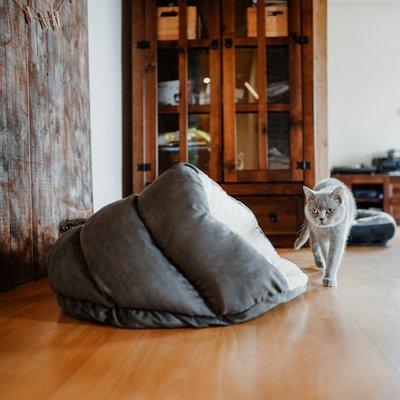 Hunter Katzenhöhle Brighton Preview Image