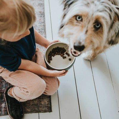 Hunter Keramik Hundenapf Lund Preview Image
