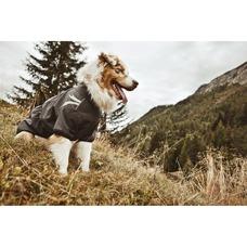 HURTTA Softshelljacke für Hunde Frost Jacket Preview Image