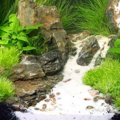 JBL Sansibar WHITE feiner Bodengrund für Süß- und Meerwasser-Aquarien Preview Image
