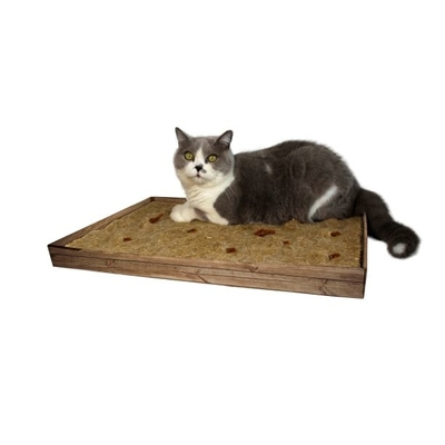 JR Farm JR Cat Aktiv-Teppich für Katzen Preview Image