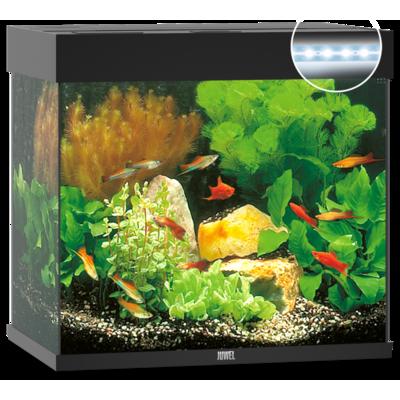 Juwel Lido 120 LED Aquarium Preview Image