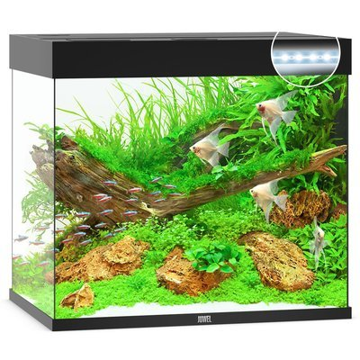 Juwel Lido 200 LED Aquarium Preview Image