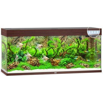 Juwel Rio 240 LED Aquarium Preview Image