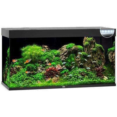 Juwel Rio 350 LED Aquarium Preview Image