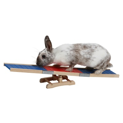Kerbl Kaninchen Agility Wippe Preview Image