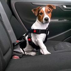 Karlie Autosicherheitsgeschirr Preview Image