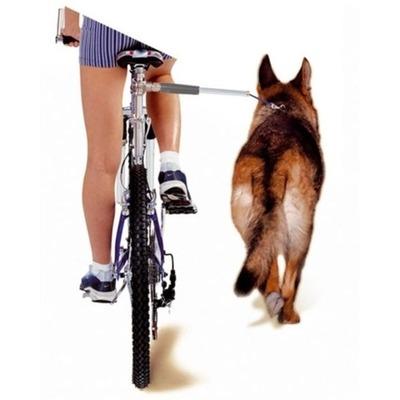 Walky Dog Karlie Fahrradhalter Fahrradleine für Hunde Preview Image