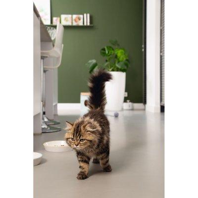 Beeztees Katzennapf Zina Preview Image