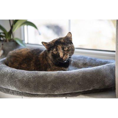 Kerbl Fensterliegebett für Katzen Preview Image