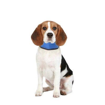 Karlie Kühlhalsband für Hunde Bandana Fresk Preview Image