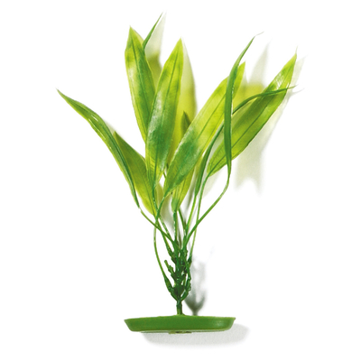 Marina Aquascaper Pflanzen ab 30 cm Preview Image