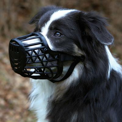 TRIXIE Maulkorb für Hunde aus Kunststoff Preview Image