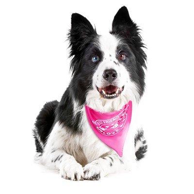 Max & Molly Bandana für Hunde Preview Image