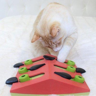 Nina Ottosson Katzen Puzzle Melon Madness Preview Image