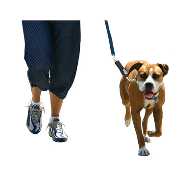 PatentoPet DOG-e-Walks Dog Trainer Basic Preview Image