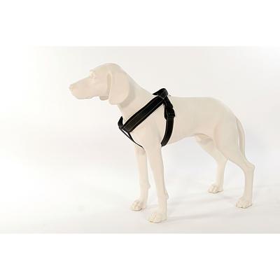 PatentoPet Sport Hundegeschirr mit integrierter Leine Preview Image