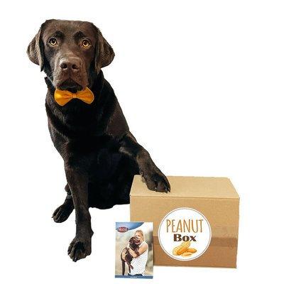 tiierisch.de Überraschungsbox Peanut für Hunde Preview Image