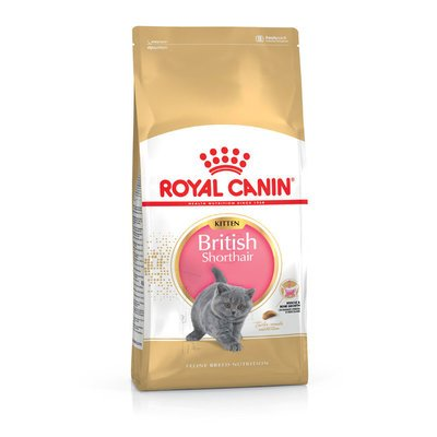 Royal Canin British Shorthair Kitten Preview Image