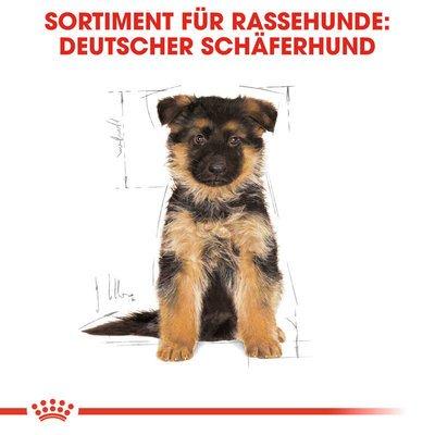 Royal Canin German Shepherd Puppy Welpenfutter trocken für Deutsche Schäferhunde Preview Image