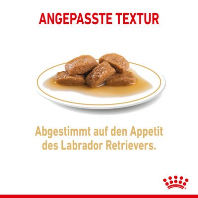 Royal Canin Labrador Retriever Adult Nassfutter Preview Image