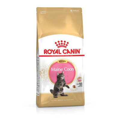 Royal Canin Maine Coon Kitten Preview Image