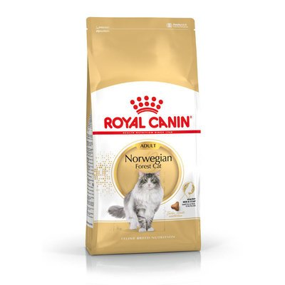 Royal Canin Norwegian Forest Cat Adult Trockenfutter für Norwegische Waldkatzen Preview Image