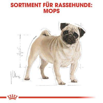 Royal Canin Pug Adult Hundefutter trocken für Mops Preview Image
