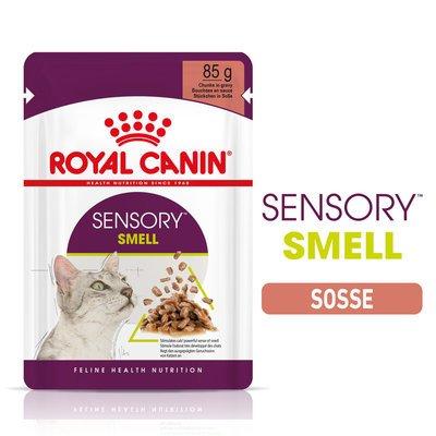 Royal Canin Sensory Smell Stimulation Katzen Nassfutter Preview Image
