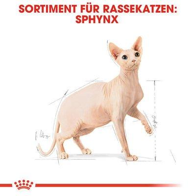 Royal Canin Sphynx Adult Katzenfutter trocken Preview Image
