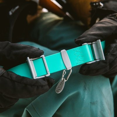 Ruffwear Confluence Waterproof Hunde Halsband Preview Image