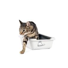 Karlie Simon's Cat Katzentoilette grau Preview Image