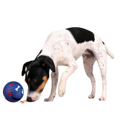 TRIXIE Snacky Snackball für Hunde Preview Image