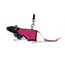 TRIXIE Softgeschirr für Meerschweinchenbabys und Ratten Preview Image