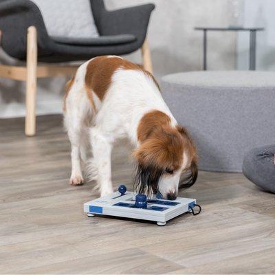 TRIXIE Dog Activity Mini Mover Hundespiel für kleine Hunde Preview Image