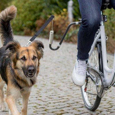 TRIXIE Fahrrad Set mit Leine Preview Image