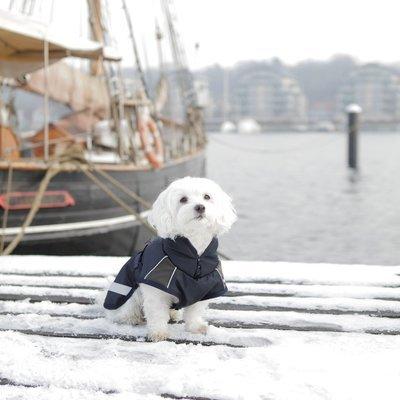 TRIXIE Hunde Wintermantel Rimont Preview Image