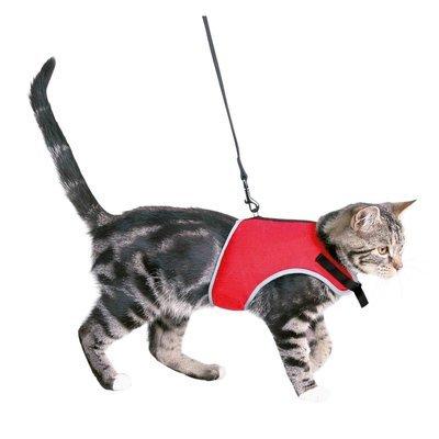 TRIXIE Katzengeschirr mit Leine Preview Image