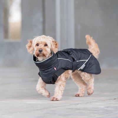 TRIXIE Wintermantel für Hunde Brizon Preview Image