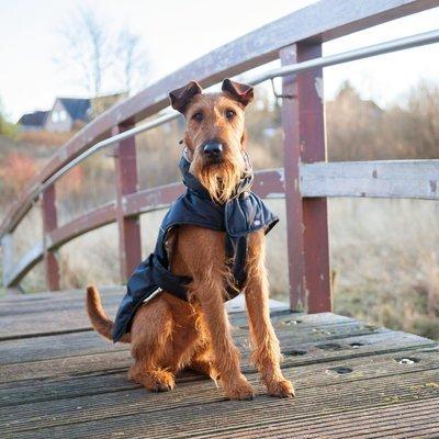 TRIXIE Wintermantel für Hunde Explore Preview Image