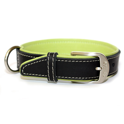Wolters Halsband Terranova Fettleder Preview Image