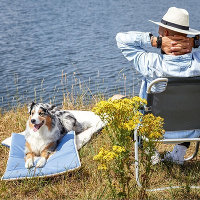 Wolters Hundematte To-Go Reise Pad Comfort Preview Image