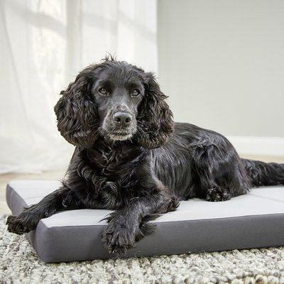 Wolters VIP Matratze Nylon für Hunde Preview Image