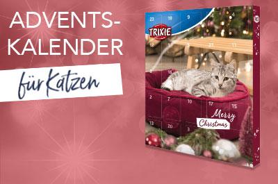 Katzen Adventkalender