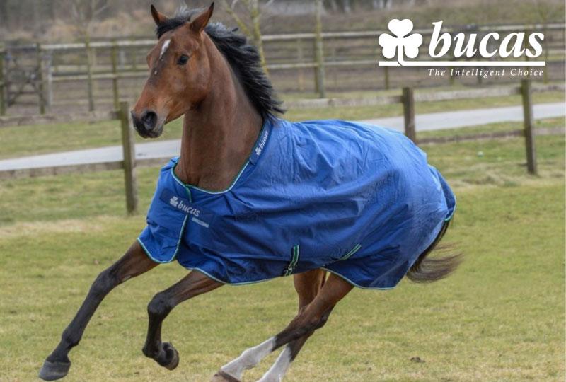 BUCAS Pferdedecken